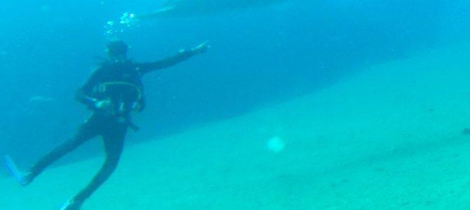 Impressionen vom Utopia Beach bei den Euro Divers